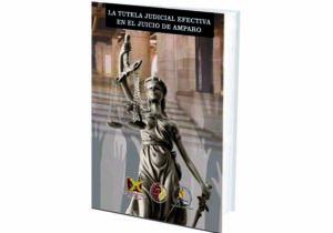 La Tutela Judicial Efectiva en el Juicio de Amparo.