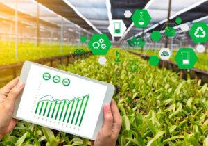 Tecnología e innovación agrícola para una mayor productividad del campo